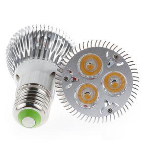 Светодиодные лампы PAR20