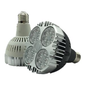 Светодиодные лампы PAR30